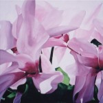 """Cyclamen"" Brenda Stonehouse 24"" x 24"" oil on canvas. Available for purchase."